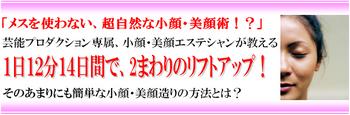 小川式小顔美顔術 小川早苗の簡単な小顔・美顔造りの方法.jpg